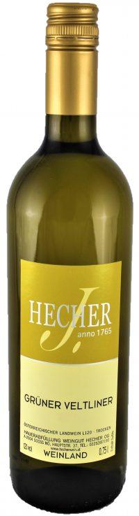 Hecher_Gruener-Veltliner_3D_oJ (2)